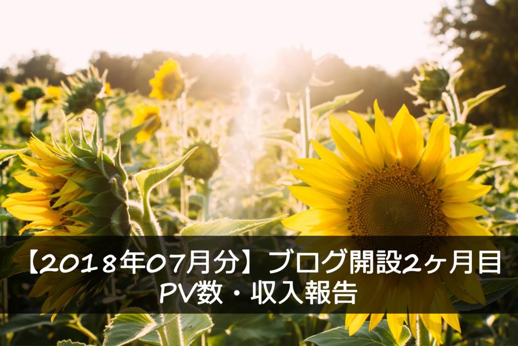 ブログ2ヶ月目PV・収益報告