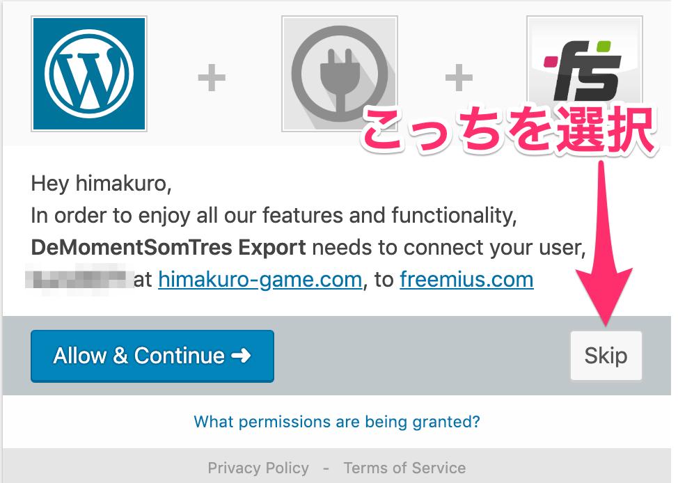 DeMomentSomTres Export - インストールスキップ